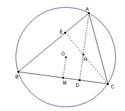 unit 7 polygons and quadrilaterals homework 2 gina wilson